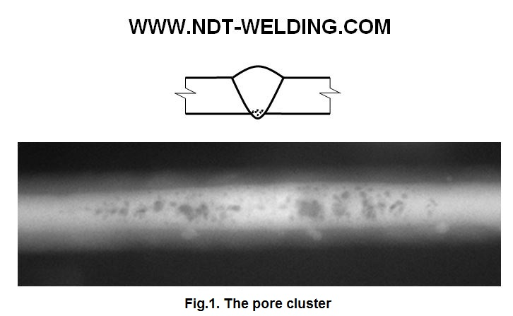Fig.1. The pore cluster